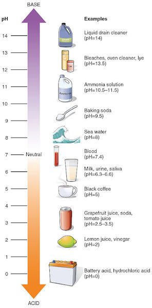 ph-scale-healthy-skin