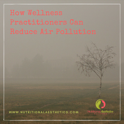 How Wellness Practitioners Can Reduce Air Pollution